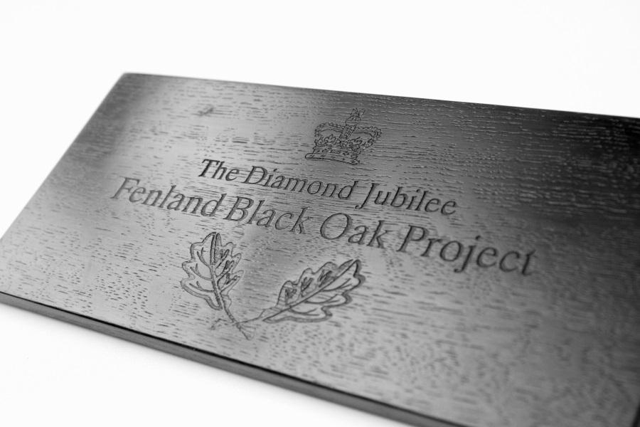 fbo plaque 4 resize bog oak.jpg