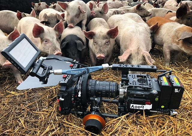 'Pearls before swine' but ironically not here... #redweapon #cameradept #focuspuller #r3d #brighttangerine #arripca #angenieuxoptimo #cinemalens #cinematography