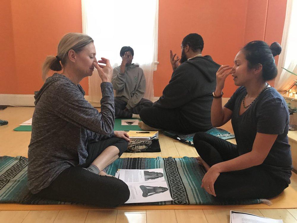200-Hour Yoga Teacher Training 2019