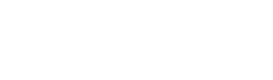 Falcon Automotive
