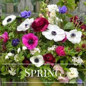 Spring CSA.jpg
