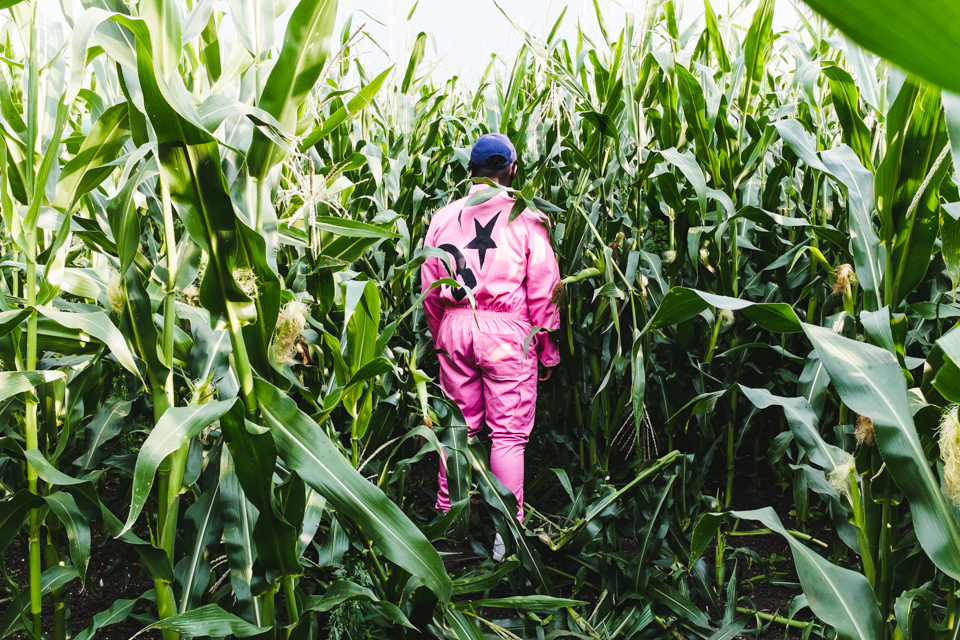 BU-in-the-cornfields-5.jpg