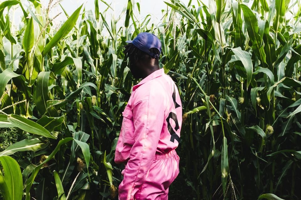 BU-in-the-cornfields-9.jpg