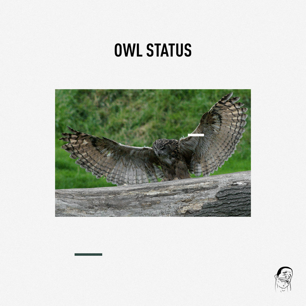 owl-status.jpg