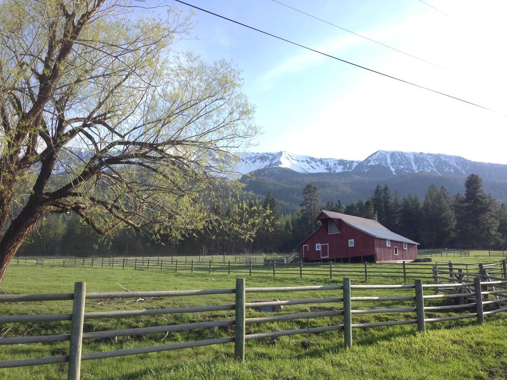 Cattle Ranch, Wallowa Mountains, Joseph, Oregon