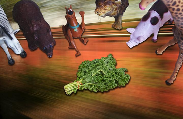 scooby'll eat kale