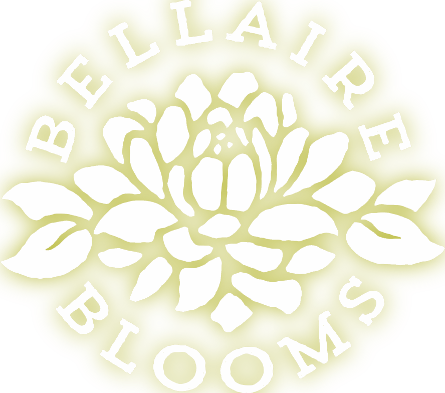 Bellaire Blooms