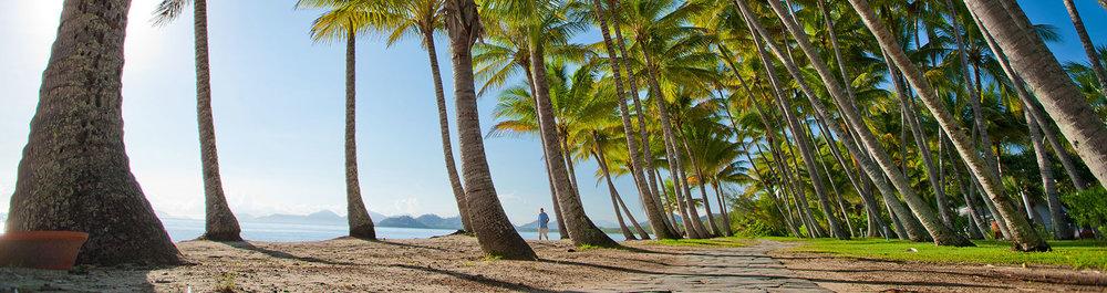 Palm-Cove-1.jpg