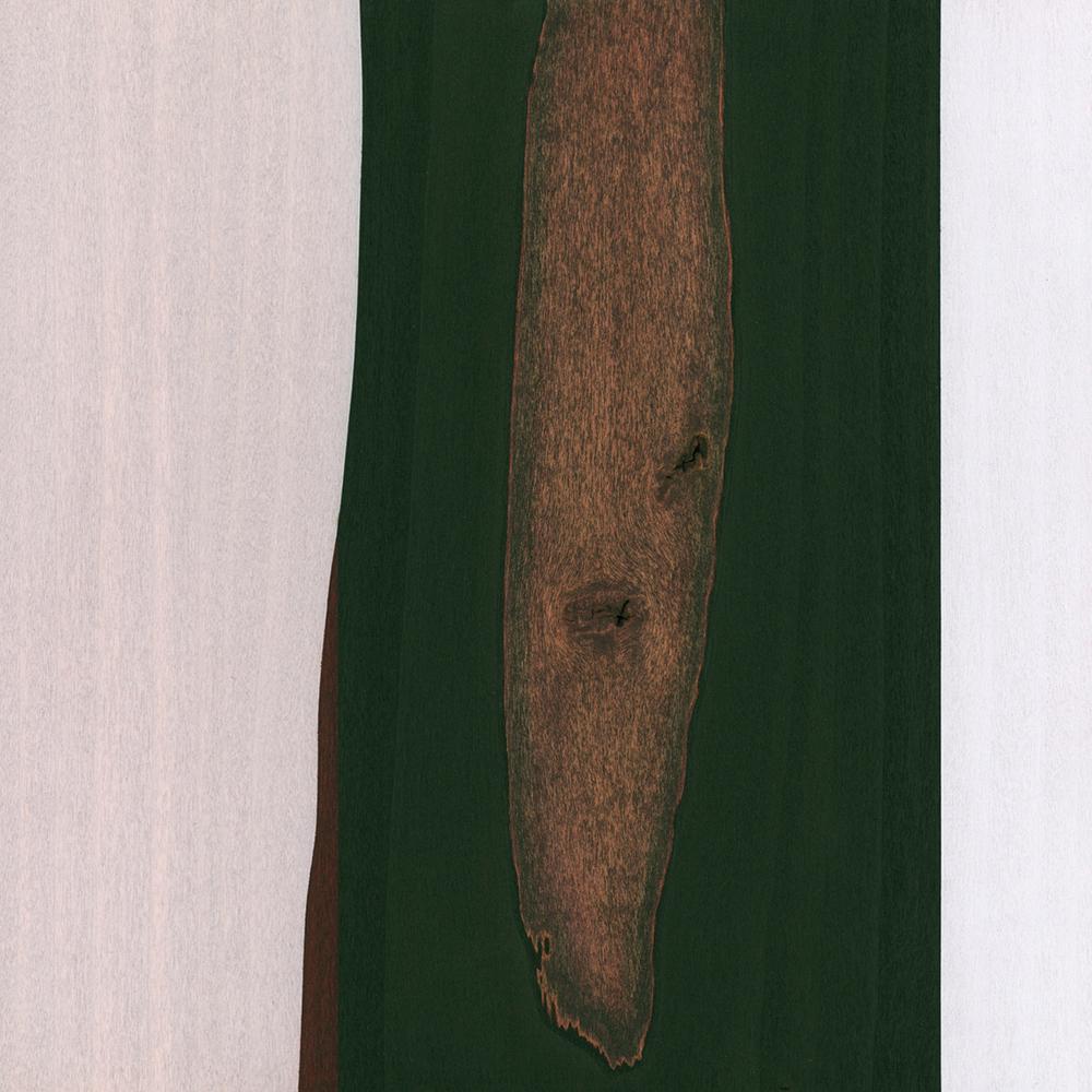 """Didymus  Gouache / Ink / Wood 10.25"""" x 10.25"""" x 1"""" 2009"""