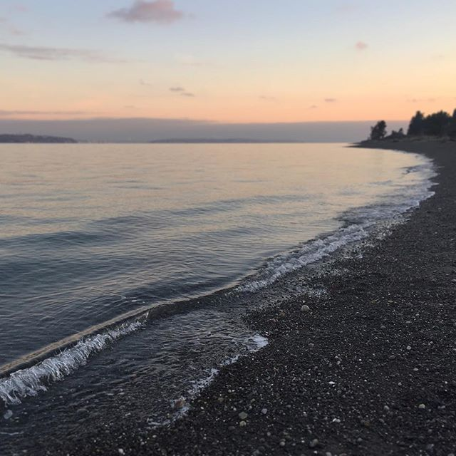 #pugetsound #coastalecology #beach