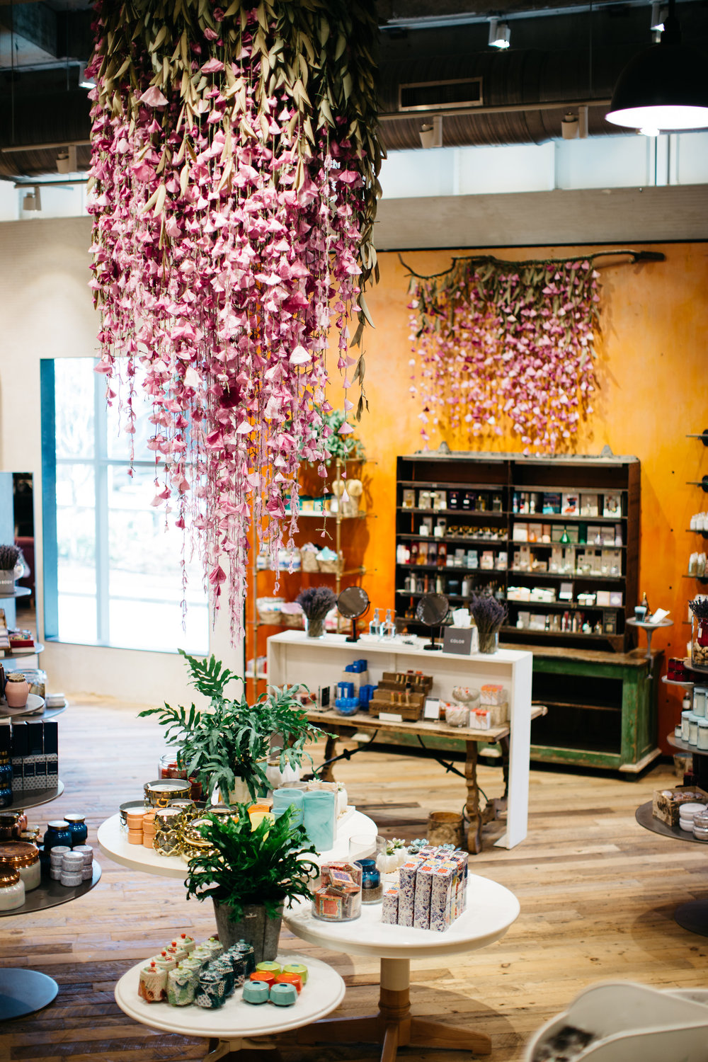 OPPORTUNITY: Create wisteria installation in Anthropologie as a visual  display intern. SOLUTION: Using