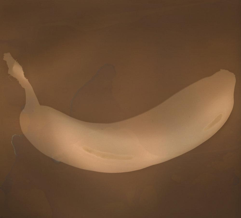 David Armentor - Go Bananas