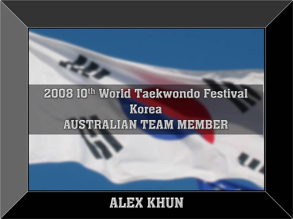 2008worldfestival.jpg