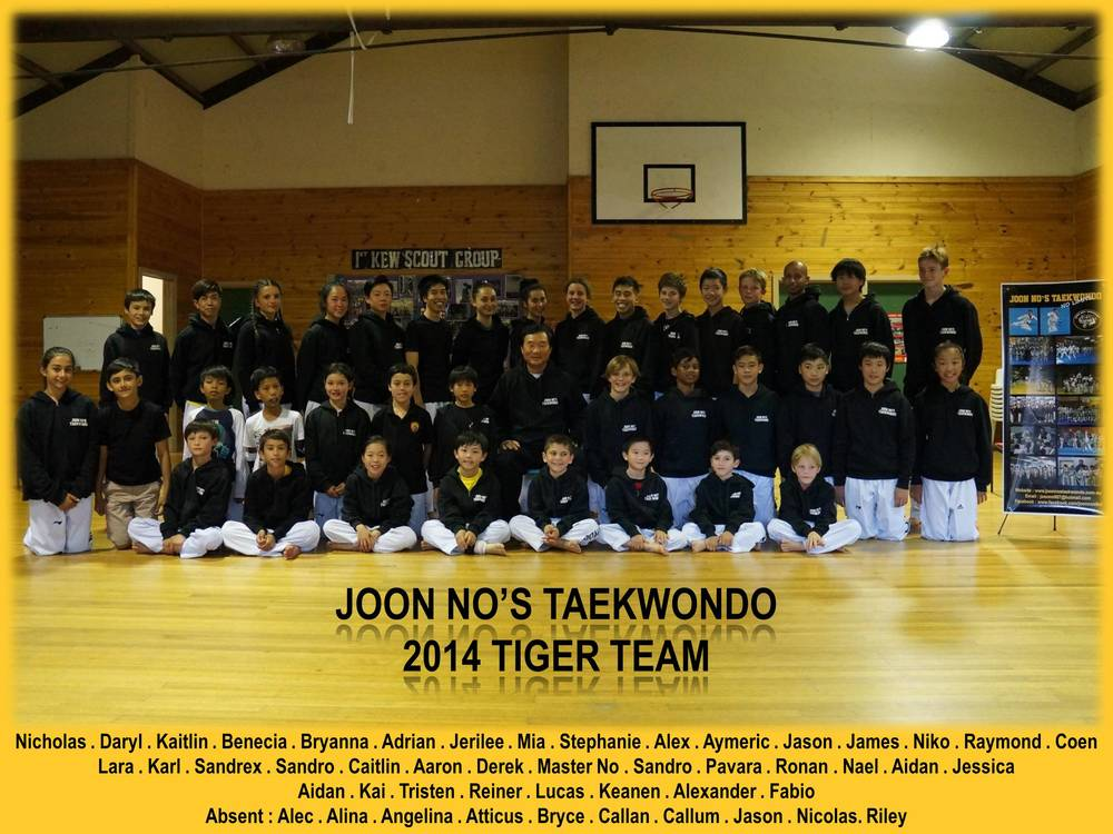 2014 tiger team.jpg
