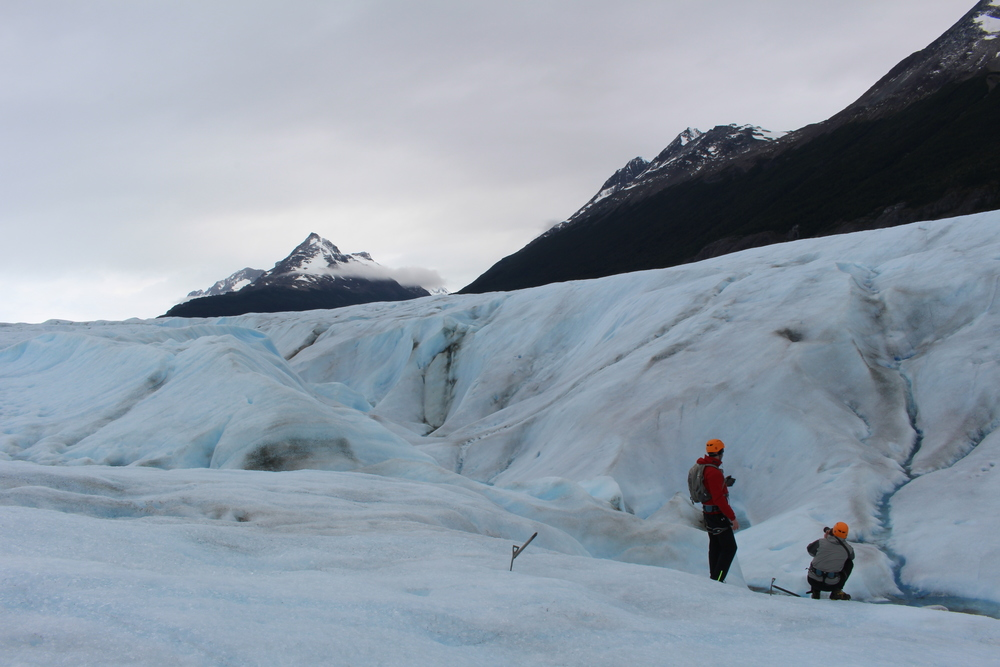 Glacier trekking on Glacier Grey