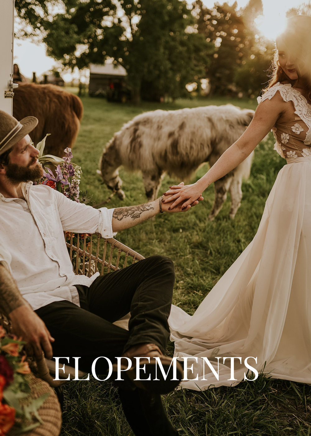 elopements-llama-country-wedding-raelyn-ramey-photography.jpg