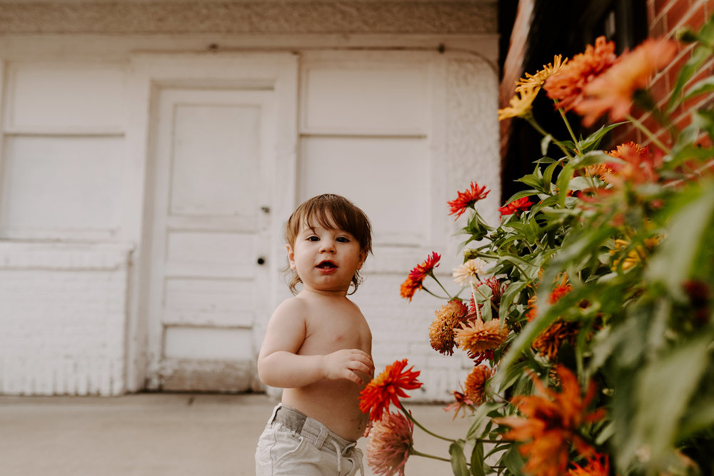 natale-family-boy-playing-with-flowers-at-frostees-winterset-iowa-raelyn-ramey-photography-213.jpg