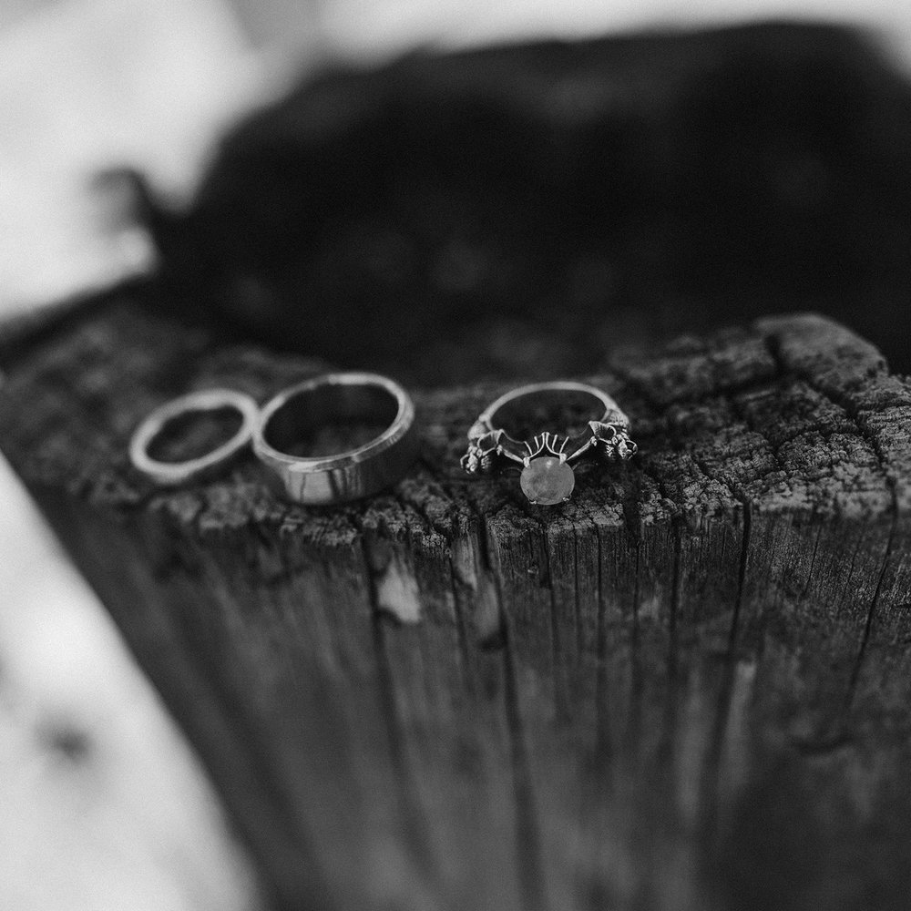 bat-wedding-ring-lupine-village-grand-lake-colorado-raelyn-ramey-photography-12.jpg