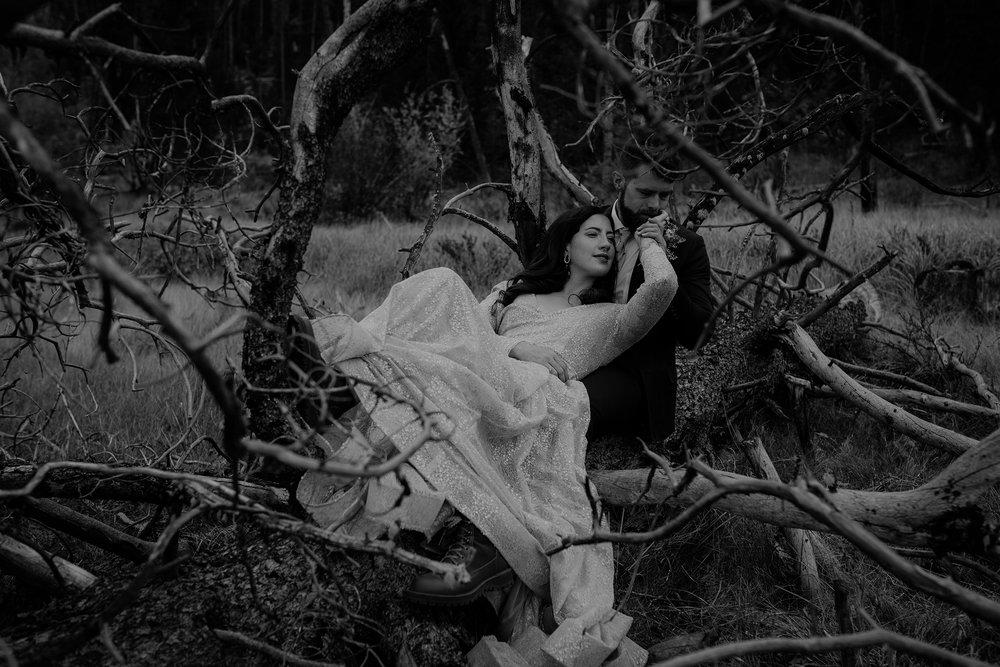 mr-mrs-likes-couple-laying-on-dead-tree-double-a-barn-grand-lake-colorado-raelyn-ramey-photography-360.jpg