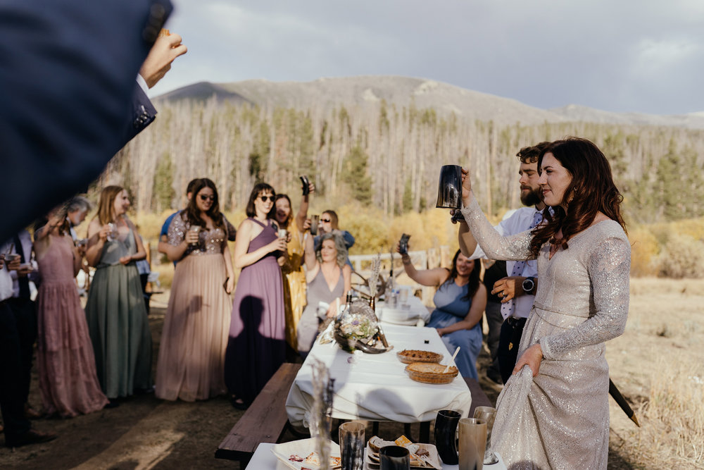wedding-guests-raising-glasses-for-a-toast-double-a-barn-grand-lake-colorado-raelyn-ramey-photography-623.jpg