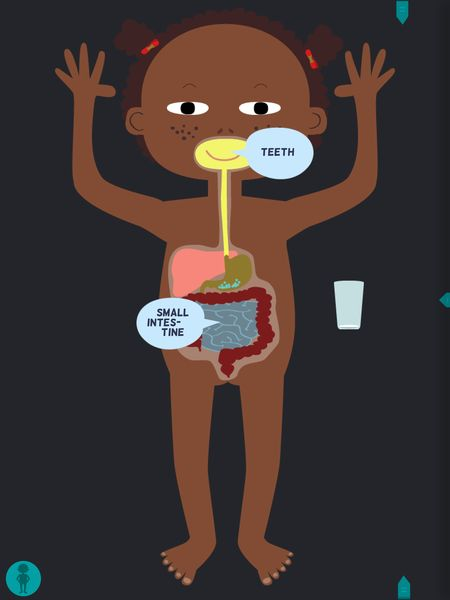 Explore The Human Body In This Is My Body Anatomy For Kids Geeks