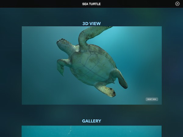 Interactive 3D view provides you with a 360-degree look at each animal