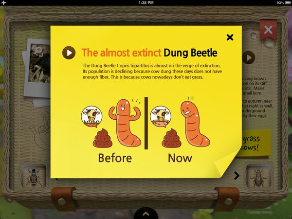 Why dung beetles are almost extinct.