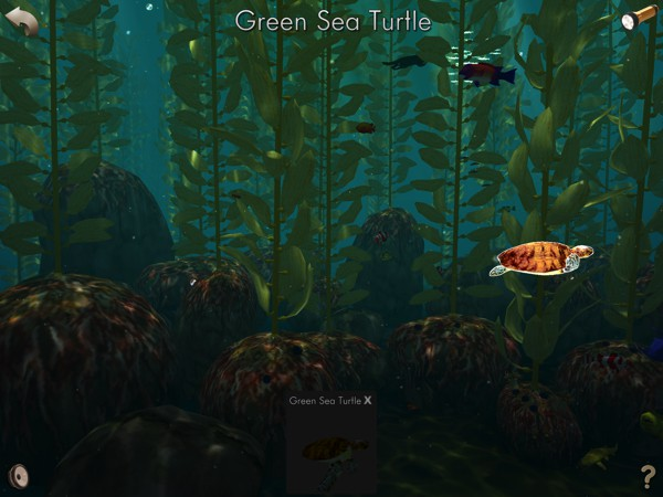 The app also includes an open-ended exploration mode where you can freely explore a virtual kelp forest, and listen to interesting facts about the animals that live there