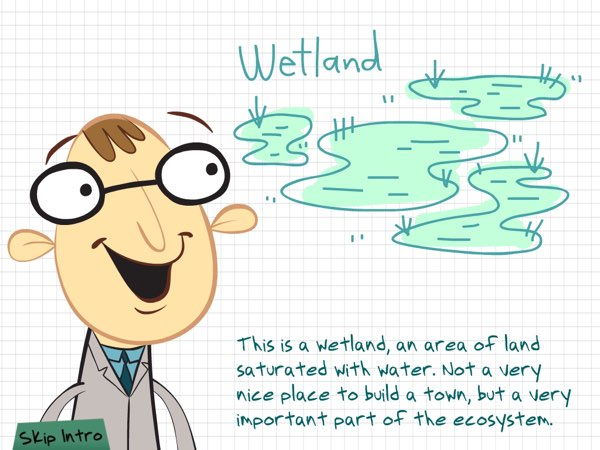 Professor Biodiveesee will introduce you to the animals and plants that inhabit the wetlands as you rebuild the ecosystems.
