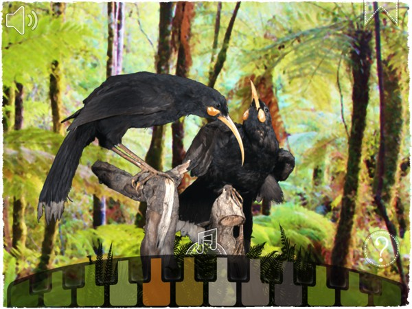 This interactive 360-degree view allows us to learn what the huia birds look like and listen to their numerous bird calls