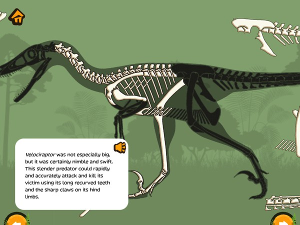 Kids can read or listen to the scientific articles written in a kid-friendly way by paleontologists