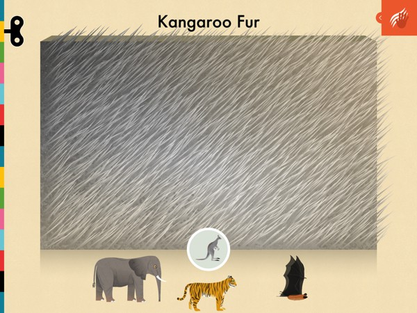 Kids can also study the fur of different mammals