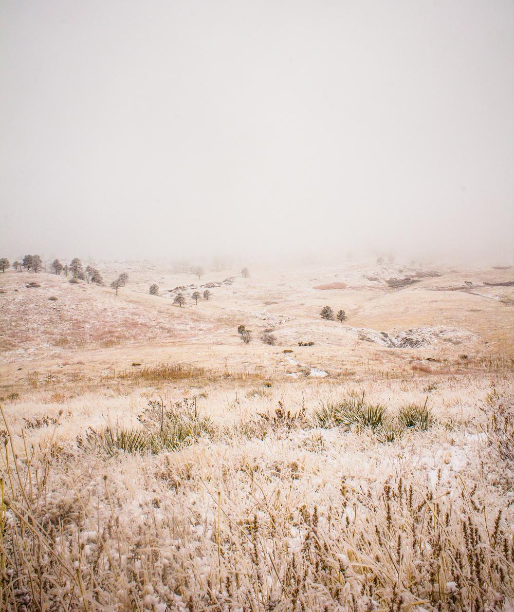 SNOWYMOUNTAINS-3.jpg