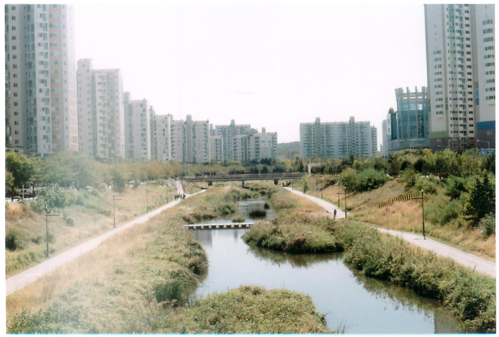 riverpath.jpg