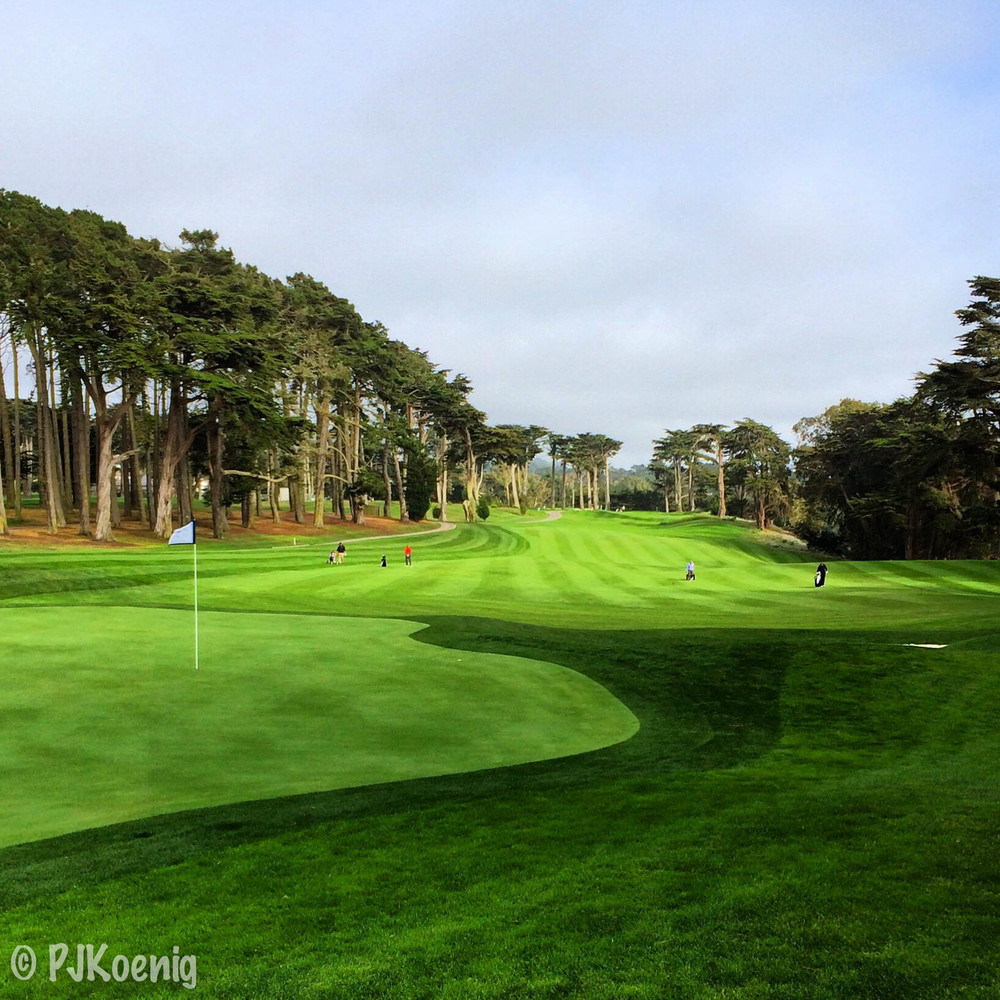 Harding Park Golf Course1-3.jpg