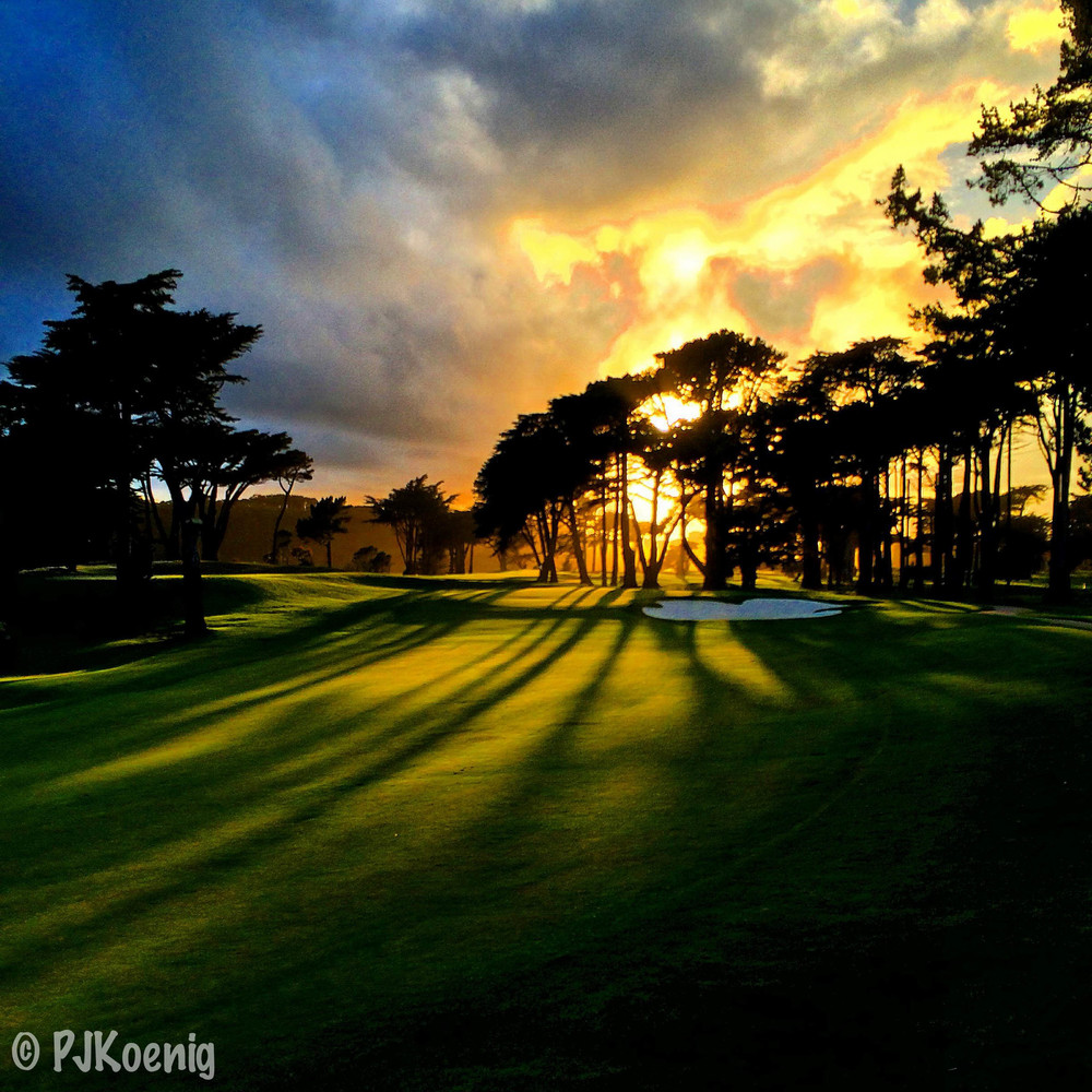 Harding Park Golf Course1-2.jpg