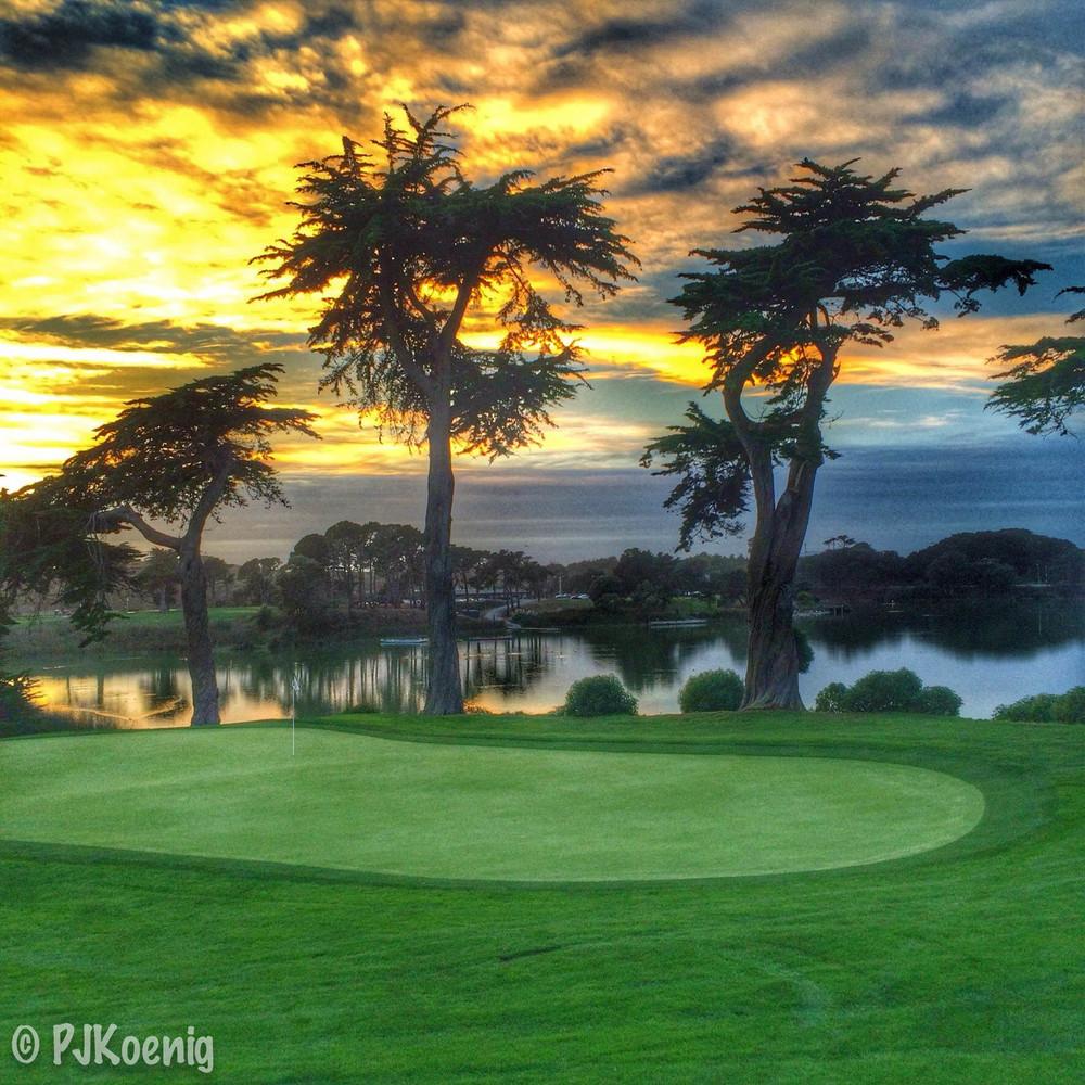 Harding Park Golf Course1-7.jpg