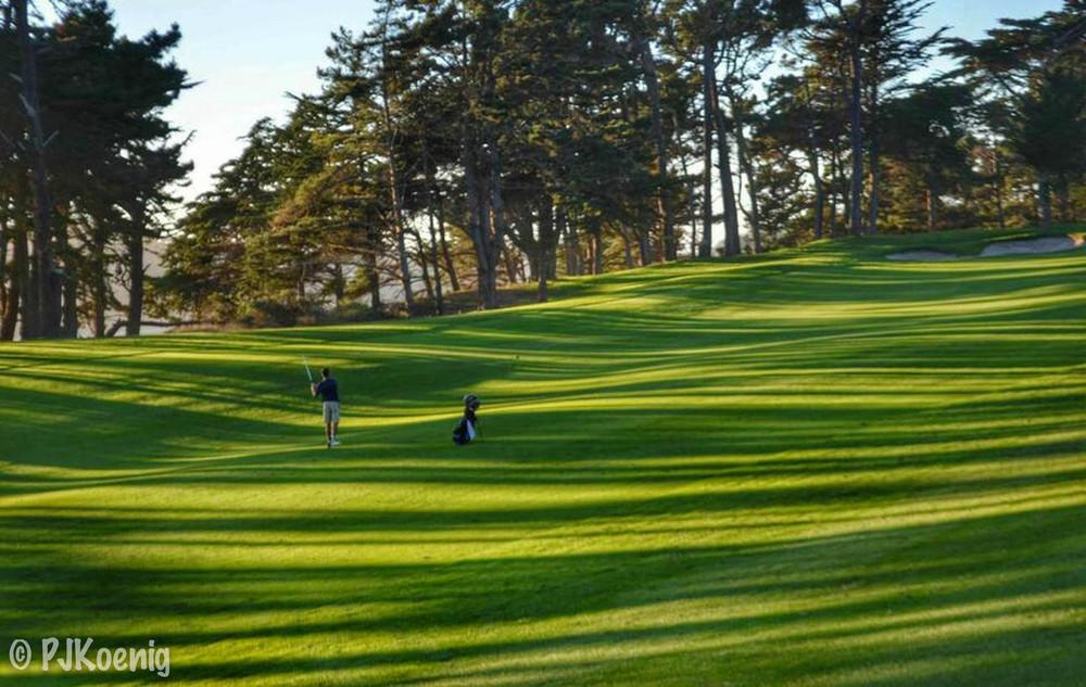 Harding Park Golf Course1-10.jpg