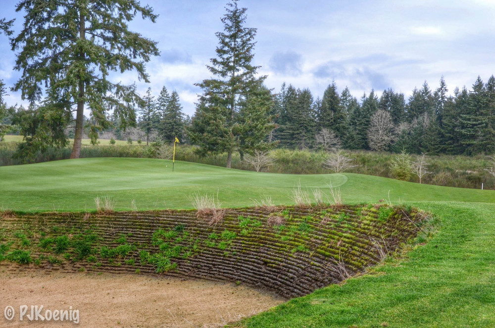 The Home Course - Dupont, WA