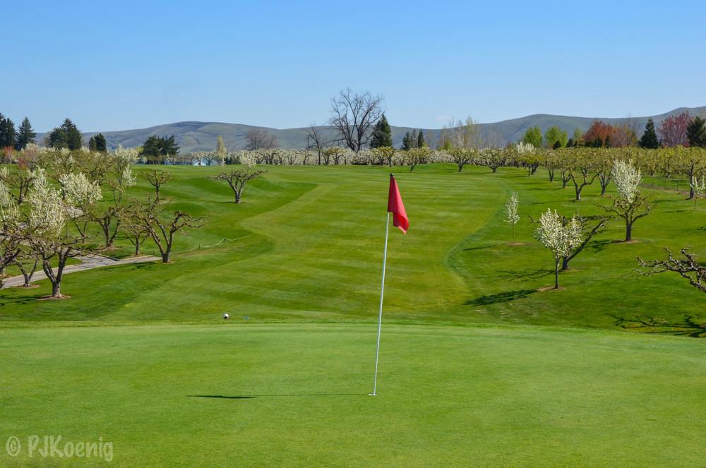 Apple Tree Golf Resort1-5.jpg