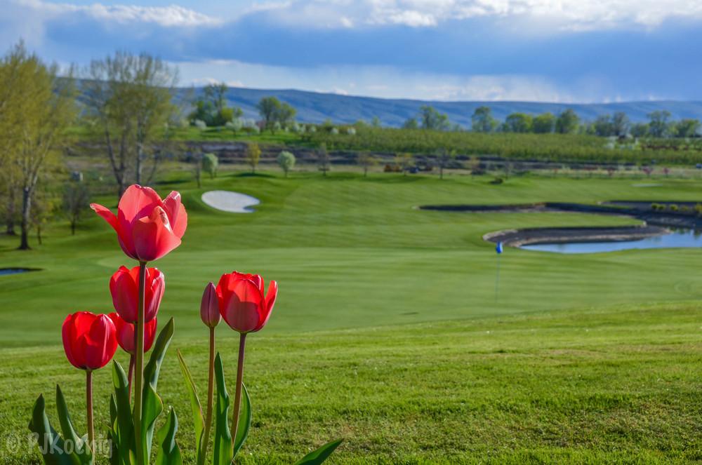 Apple Tree Golf Resort1-26.jpg