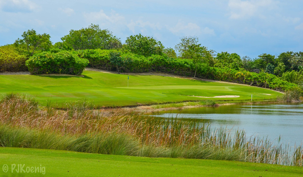 Moon Palace Golf Club1-29.jpg