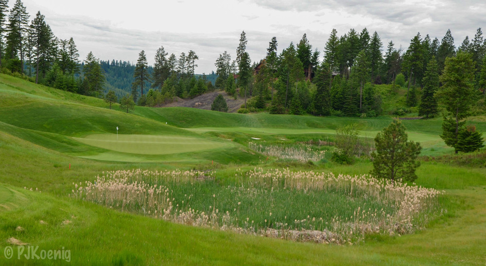 Black Rock Golf Club1.jpg