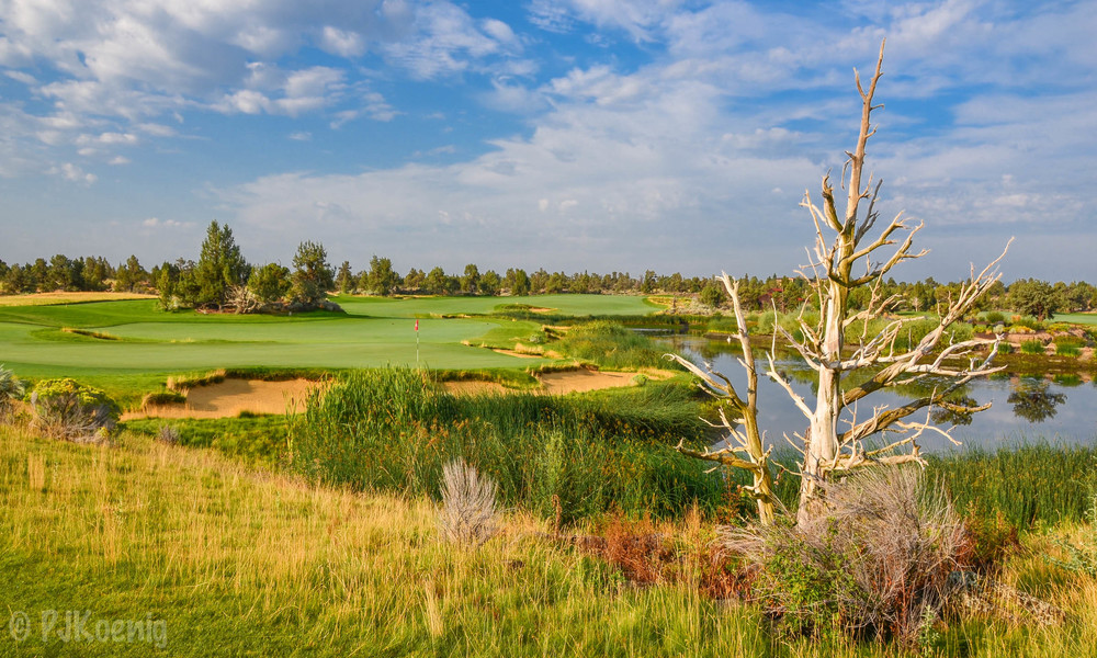 My favorite photo from the trip comes from #18 at Pronghorn.  This photo pretty much took itself.