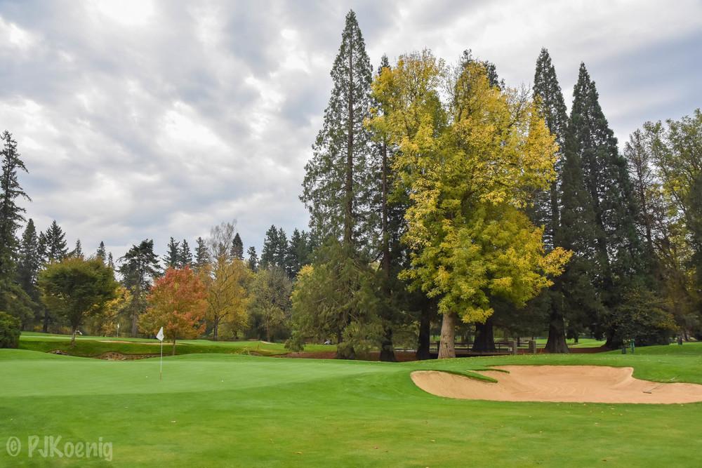 Portland Golf Club1-2.jpg