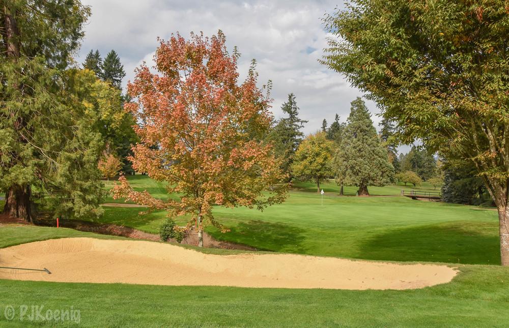 Portland Golf Club1-15.jpg