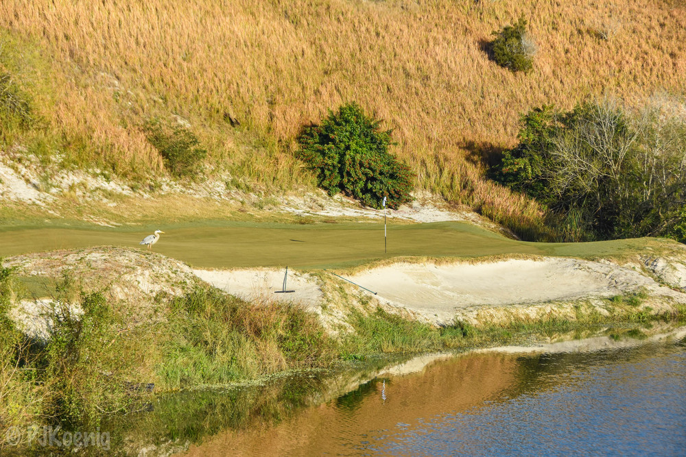 Streamsong Red1.jpg