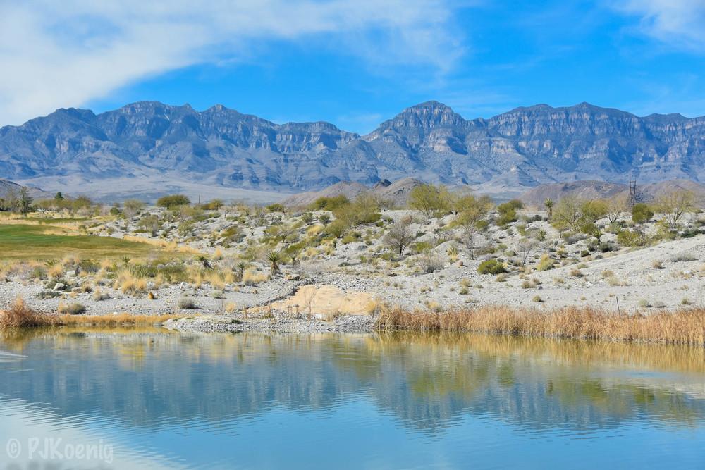 Coyote Springs1-87.jpg