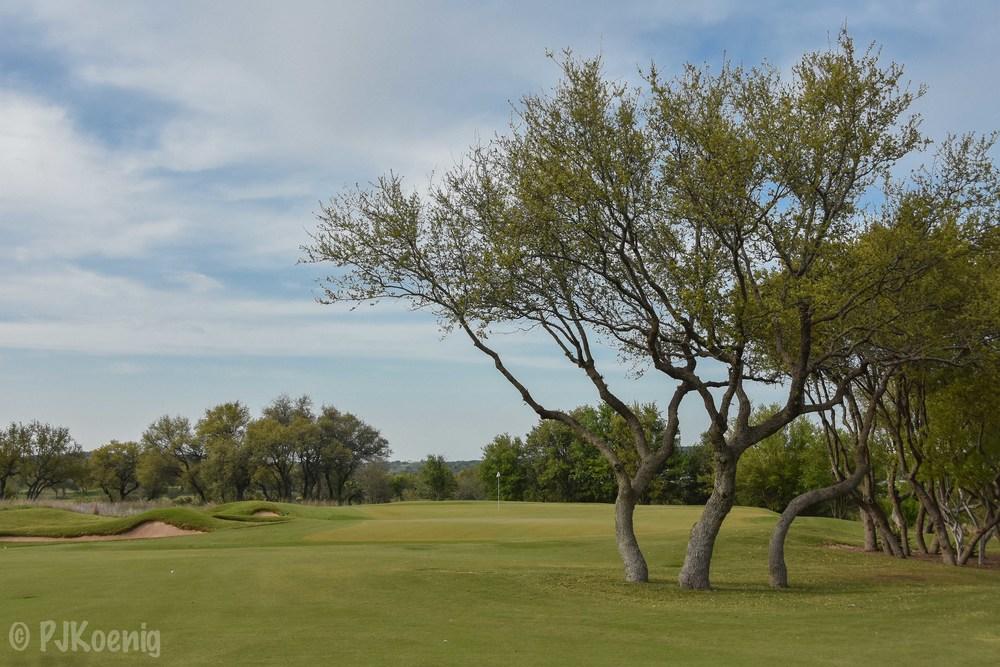 Spanish Oaks1-41.jpg