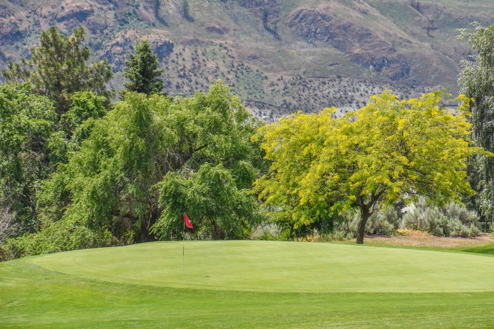 Lake Chelan Golf Club1-2.jpg